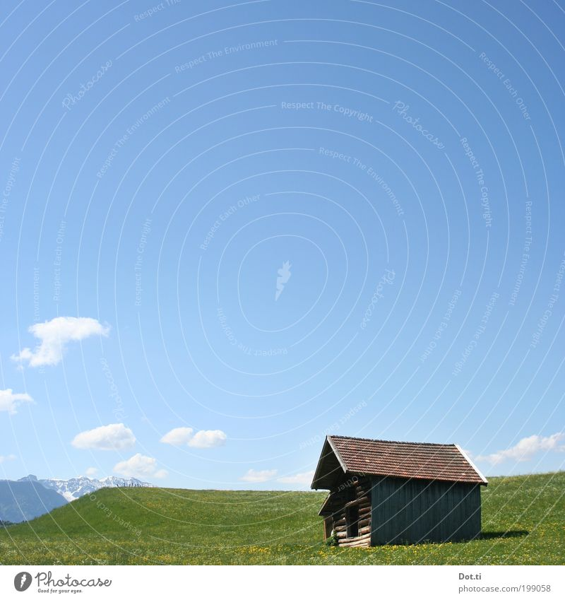 barn Vacation & Travel Tourism Summer Summer vacation Mountain Nature Landscape Sky Clouds Sunlight Grass Meadow Hill Alps Snowcapped peak Juicy Blue Green