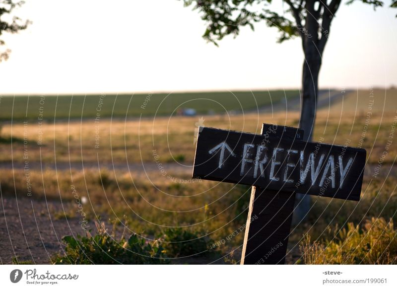 Free Nature Landscape Meadow Street Road sign Yellow Green Freeway USA California Direction Colour photo Exterior shot Deserted Morning Dawn