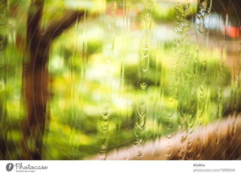 The blurred nature Life Nature Plant Weather Rain Grass Meadow Street Movement Wet Natural Green Lawn asian urban bus Sidewalk blurry move Scene Hongkong Asia