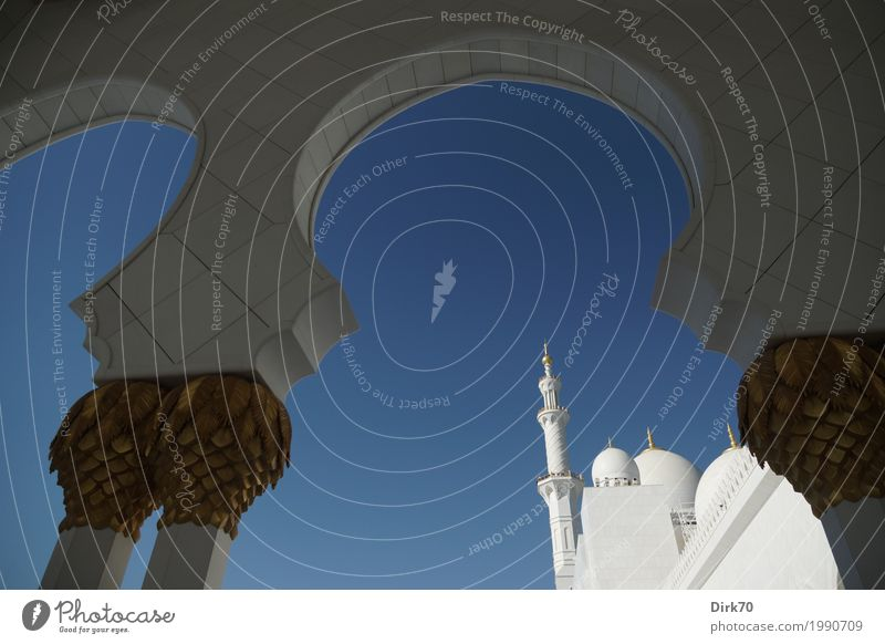 Sheikh Zayid Mosque Luxury Cloudless sky Sunlight Spring Climate Beautiful weather Abu Dhabi United Arab Emirates Town Capital city Manmade structures Minaret