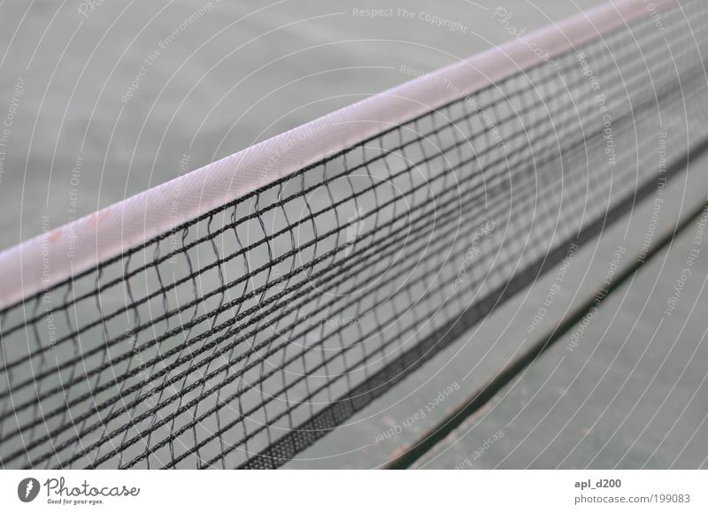 Ping and Pong Life Leisure and hobbies Playing Tennis Net Table tennis Table tennis table Vacation & Travel Movement Esthetic Authentic Exceptional Brown Gray