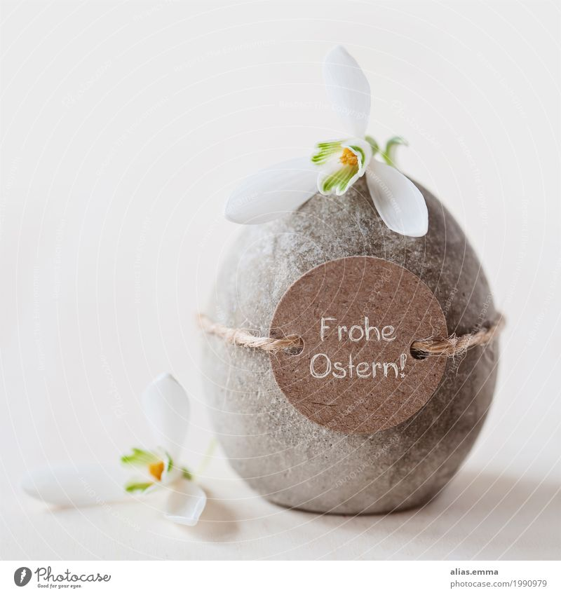 Easterstones Easter egg Egg Concrete Easter wish Easter gift Stone Snowdrop Flower Spring April Blossoming Card Natural happy easter Simple Bouquet Family party