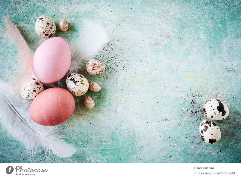 Blue Spring Background picture Design Pink Copy Space Decoration Feather Easter Card Bouquet Turquoise Egg Painted Rustic Easter egg