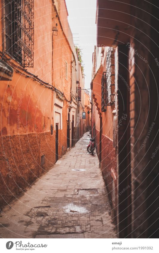 marrakech Town House (Residential Structure) Wall (barrier) Wall (building) Facade Alley Marrakesh Old Red Colour photo Exterior shot Deserted Day Long shot