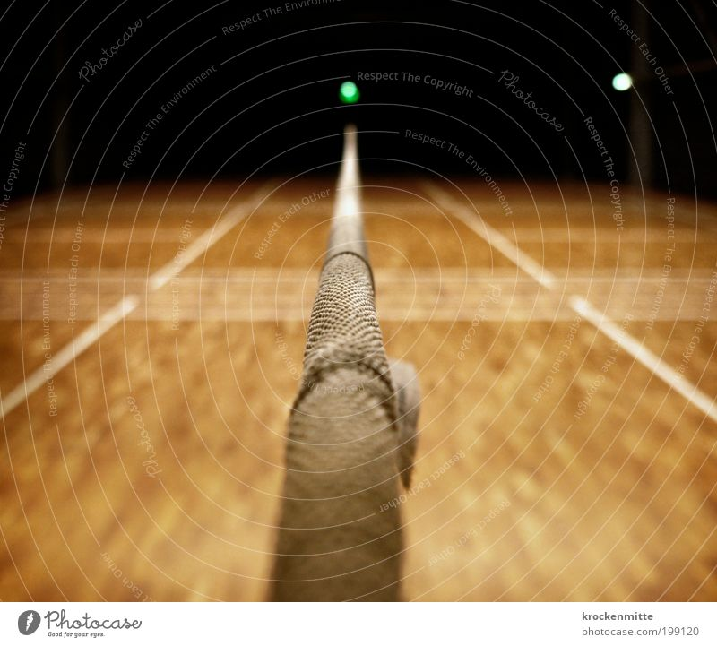 Sports Line Lighting Leisure and hobbies Signs and labeling Net Middle Playing field Divide Wooden floor Neutral Gymnasium Macro (Extreme close-up) Badminton