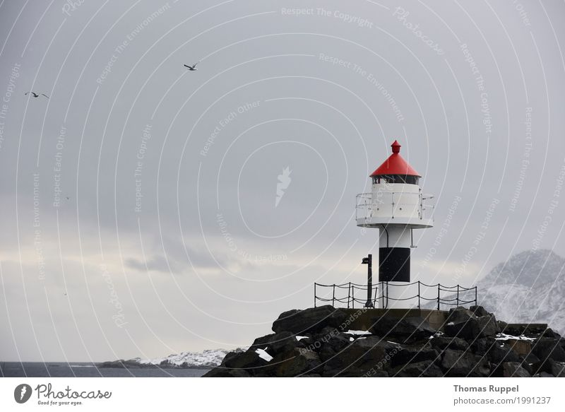 Lighthouse in Lofoten Leisure and hobbies Vacation & Travel Tourism Trip Adventure Far-off places Freedom Sightseeing Ocean Winter Snow Winter vacation Mountain
