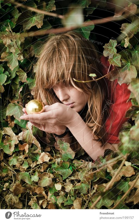 Woman Human being Youth (Young adults) Beautiful Plant Adults Feminine Gold Future Observe Kitsch Protection Fantastic Sphere Watchfulness Young woman