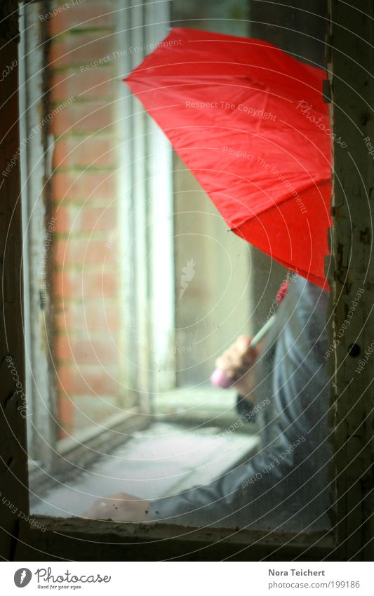Anonymously. Human being Arm Summer Bad weather Rain House (Residential Structure) Window Jacket Umbrella Glass Think Illuminate Wait Cool (slang) Free Red