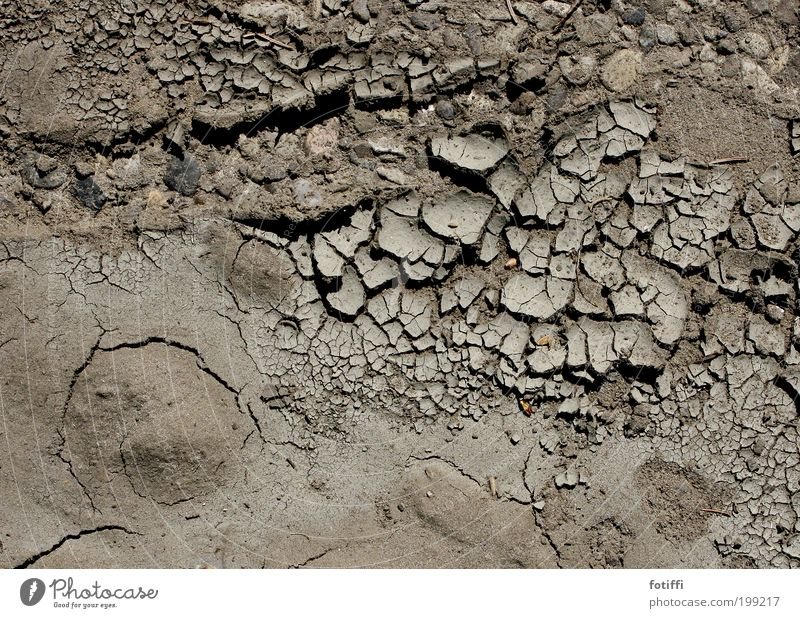 Nature Plant Calm Warmth Sand Brown Earth Climate Surface Dry Fatigue Crack & Rip & Tear Expectation Thirst Climate change Drought