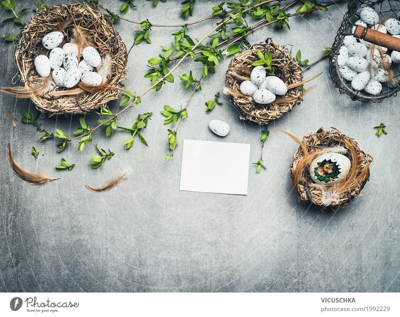 Easter background with bird's nests, eggs and twigs Style Design Decoration Feasts & Celebrations Nature Spring Plant Signs and labeling Love Background picture
