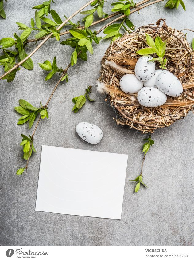 Easter eggs in nest with spring branches and map Style Design Decoration Feasts & Celebrations Nature Spring Bushes Sign Tradition Nest Symbols and metaphors