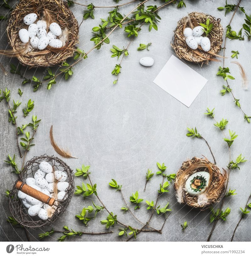 Easter Background Frame Candy Style Design Decoration Feasts & Celebrations Bouquet Sign Ornament Green White Tradition Background picture Nest