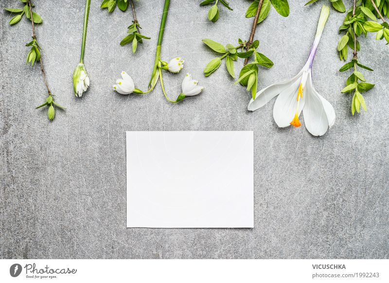 Empty white card with lily of the valley, crocuses and spring branches Style Design Garden Nature Plant Spring Flower Leaf Blossom Decoration Bouquet
