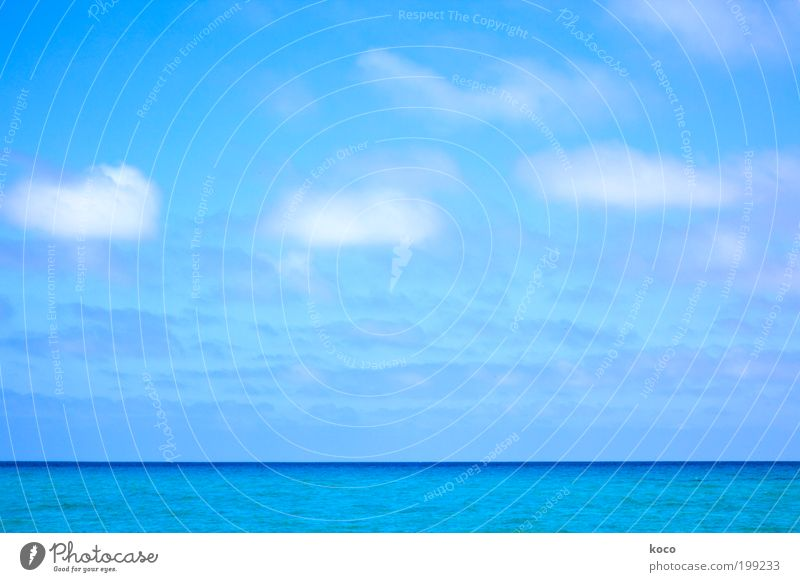 Water Sky White Sun Ocean Blue Summer Beach Vacation & Travel Clouds Far-off places Freedom Landscape Waves Horizon Navigation