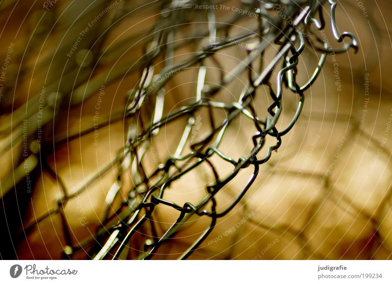 wire netting Metal Old Threat Glittering Broken Thorny Protection Watchfulness Respect Bizarre Freedom Hope Network Revolt Bans Transience Change Destruction