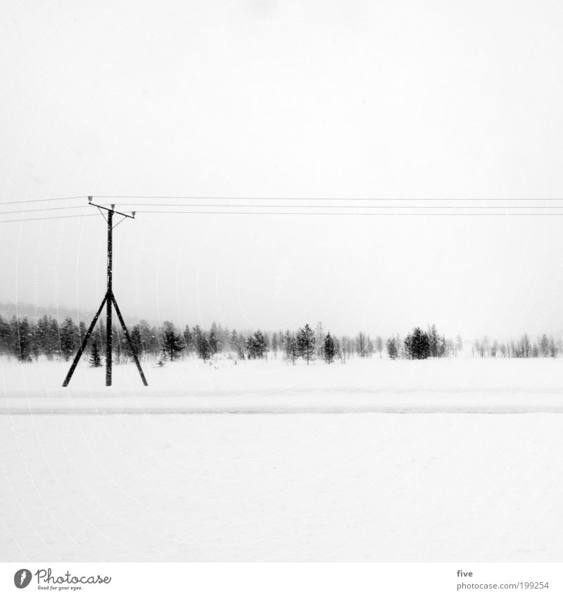 finnish power pole Vacation & Travel Trip Far-off places Freedom Winter Snow Winter vacation Environment Nature Sky Clouds Plant Tree Bushes Meadow Field Forest