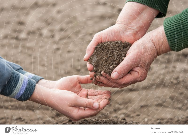Save the nature Life Garden Child Gardening Human being Woman Adults Hand Environment Nature Plant Earth Growth Dirty Natural Brown background Organic