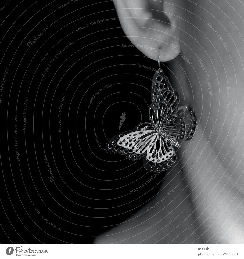 butterfly Animal Beautiful Ear Earring Accessory Suspended Glittering Neck Feminine Decoration Spring fever Small Detail Black & white photo Interior shot