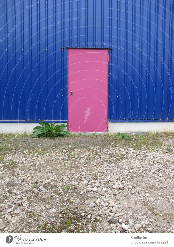 Nature White Green Blue Plant House (Residential Structure) Colour Gray Building Landscape Architecture Pink Door Design Earth Facade