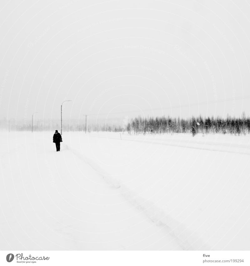 and bye-bye Vacation & Travel Trip Adventure Far-off places Freedom Winter Snow Winter vacation Human being Masculine Man Adults Environment Nature Sky