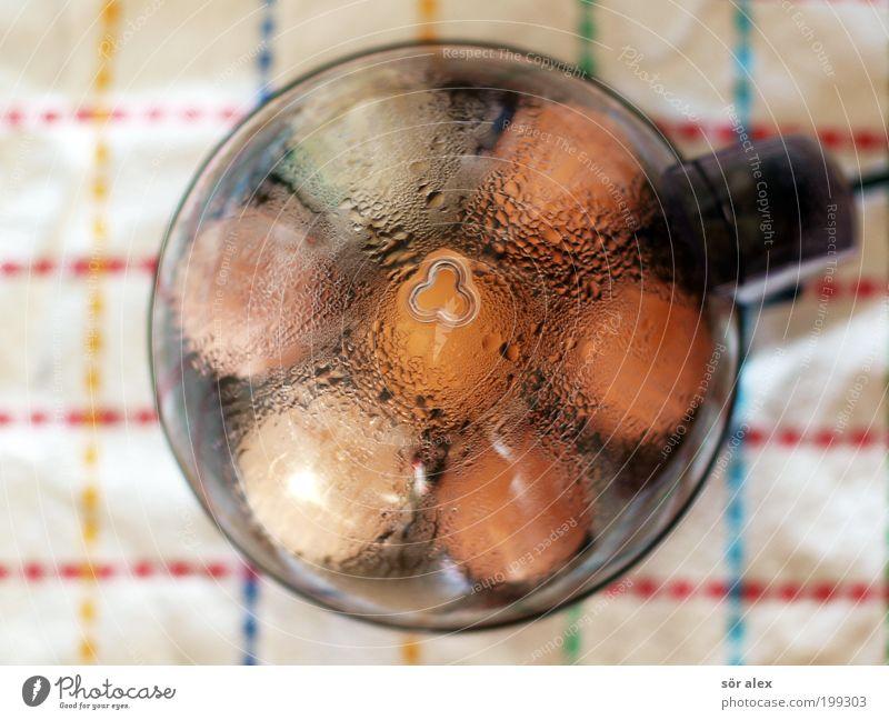 Food Fresh Nutrition Drops of water Cooking & Baking Organic produce Hot Breakfast Egg Still Life Ecological Steam Biological Animal Biochemistry Hen's egg
