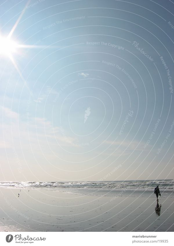 Sun Ocean Beach Loneliness Relaxation Sand Waves Horizon USA To go for a walk Going Pedestrian Surf Dazzle Blue sky Sky blue