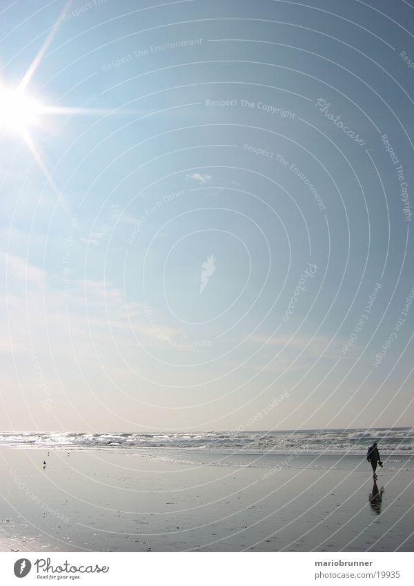 Sun Ocean Beach Loneliness Relaxation Sand Waves Horizon USA To go for a walk Going Pedestrian Surf Dazzle Blue sky Sky blue