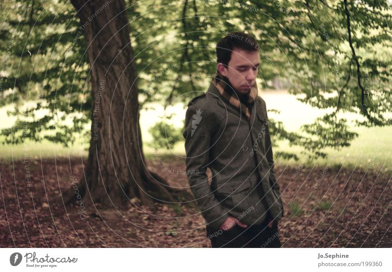 Human being Youth (Young adults) Tree Calm Relaxation Adults Autumn Young man Sadness 18 - 30 years Park Masculine Meditative To go for a walk Jacket Analog