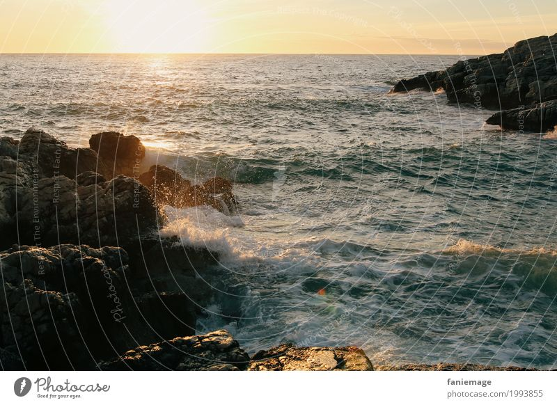 coucher du soleil à la Madrague de Montredon Nature Landscape Elements Water Drops of water Beautiful weather Waves Coast Ocean Relaxation Sunlight Bubbling