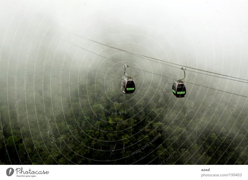 cabin Nature Tree Plant Vacation & Travel Forest Mountain Warmth Landscape Fog Island Tourism To enjoy Action Cable car