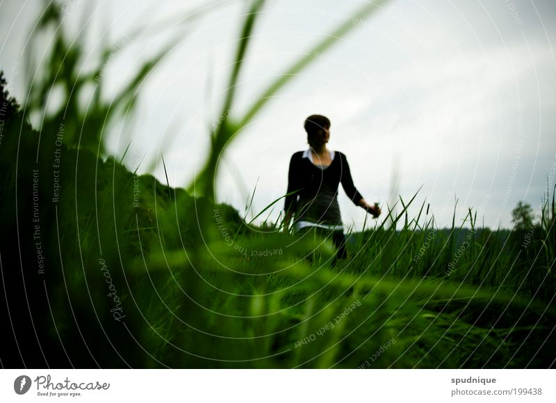 Human being Nature Youth (Young adults) Green Life Meadow Feminine Grass Spring Landscape Adults To go for a walk Going Looking Young woman