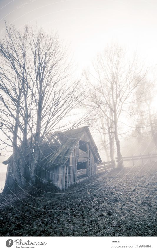 Cloudy and rainy Autumn Fog Hut hay barnyard Hayrick Cold Sadness Concern Reluctance Disappointment Loneliness Fiasco Decline Transience Lose over and done End
