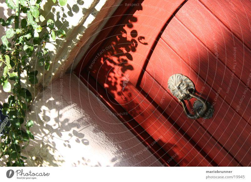 Red Wood Architecture Door Lion Cat Knock Knocker