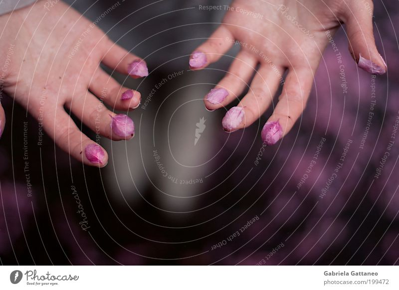 Hand Beautiful Open Pink Skin Fingers Uniqueness Violet Touch Cosmetics Fragrance Indicate Take Pastel tone Paste Palm of the hand