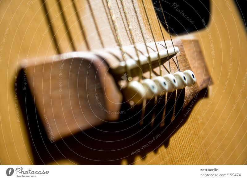 Music Wood Guitar Footbridge Tension Musical instrument Song Detail Musical instrument string Acoustic Folklore music Music unplugged Guitar string