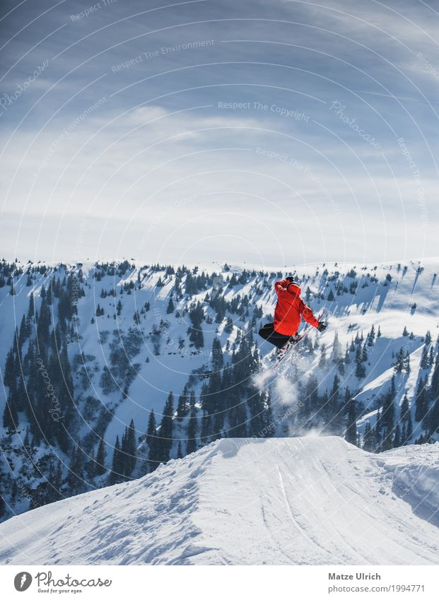 Skiing Freestyle Winter Snow Winter vacation Mountain Sports Winter sports Skis Snowboard Masculine 1 Human being Sunlight Tree Hill Rock Alps Peak