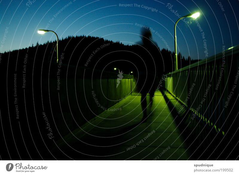 Human being Blue Green City Summer Loneliness Forest Dark Landscape Movement Lanes & trails Warmth Going Walking Perspective Bridge