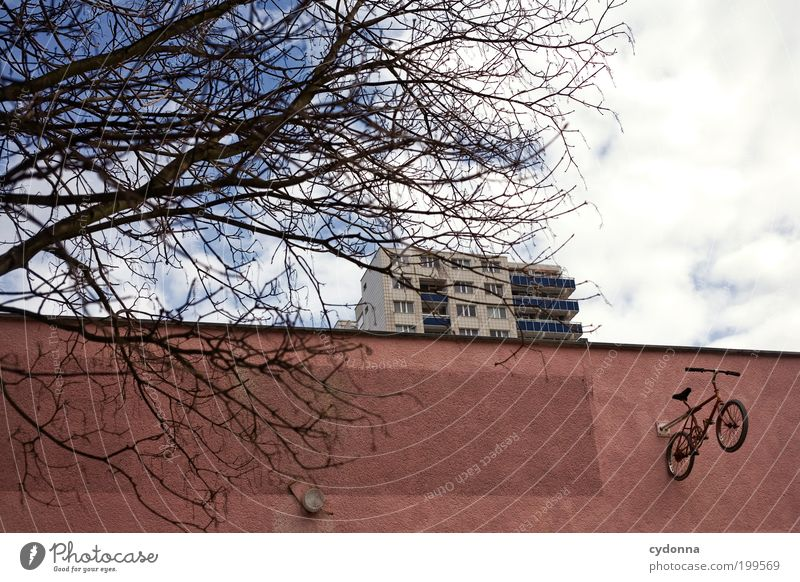 [HAL] I want to ride my Bicycle Lifestyle Style Design Leisure and hobbies Freedom Environment Sky Tree Town Architecture Wall (barrier) Wall (building) Facade