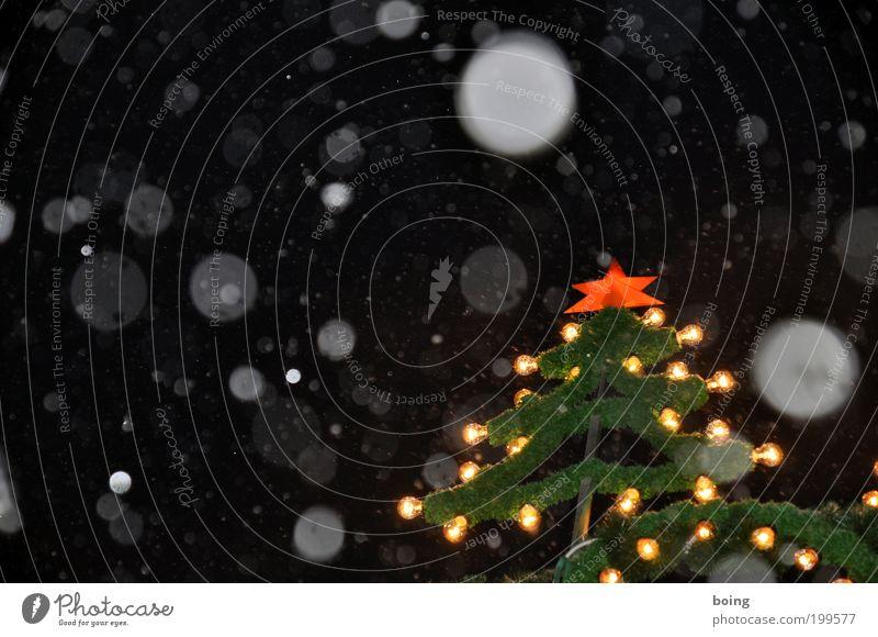 Christmas & Advent Snowfall Star (Symbol) Christmas tree Night sky Christmas decoration Night life Christmas star Christmas Fair Fairy lights Markets Snow Copy Space left Christmas fairy lights
