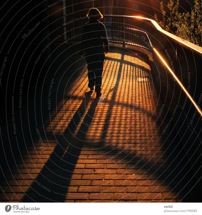 Human being Woman Calm Adults Relaxation Life Lanes & trails Moody Lighting Going Illuminate Safety Protection Handrail Sidewalk Footpath