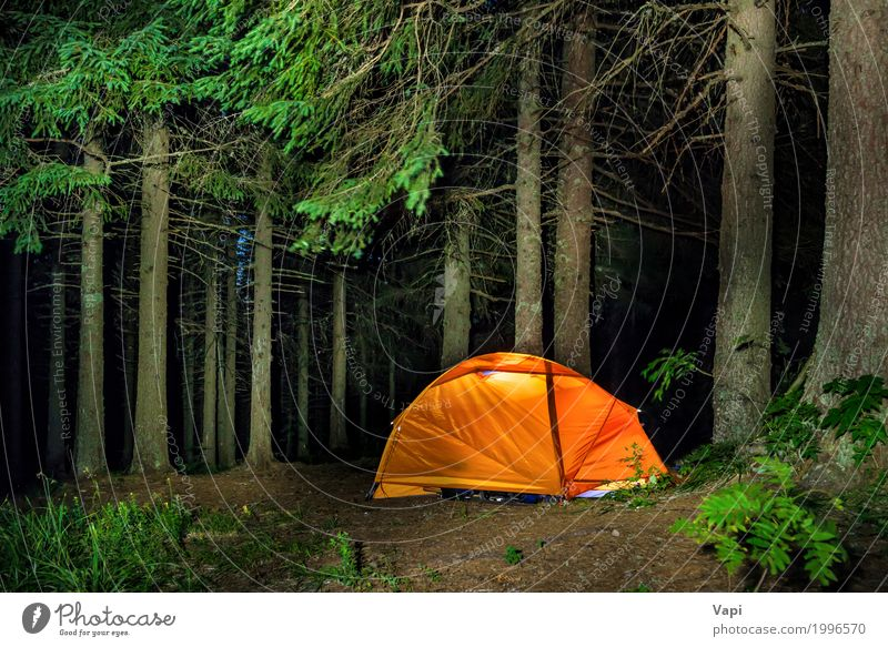 Camping in the forest Relaxation Leisure and hobbies Vacation & Travel Tourism Trip Adventure Summer Summer vacation Mountain Hiking Lamp Climbing