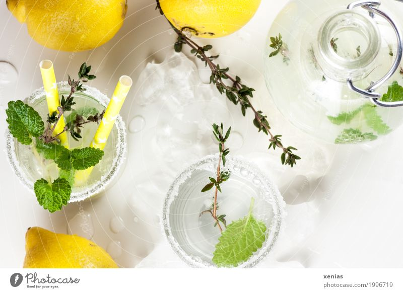 Lemon lime with mint and thyme homemade Fruit Herbs and spices Thyme Mint leaf Sugar Beverage Drinking Cold drink Drinking water Lemonade Bottle Glass Straw