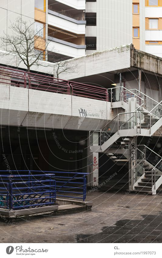 Town Tree Winter Window Architecture Wall (building) Autumn Building Wall (barrier) Facade Stairs Dirty High-rise Gloomy Places Manmade structures