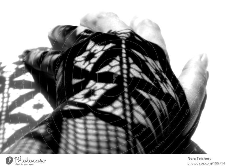 Hand White Beautiful Black Calm Feminine Emotions Dream Moody Art Esthetic Fingers Crazy Decoration Uniqueness Soft