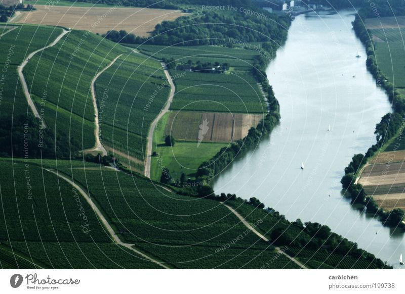 course of a river Environment Nature Landscape Water Summer Climate Field River Gray Green Silver Vineyard Wine growing Neckar Swabian Curved Walking line