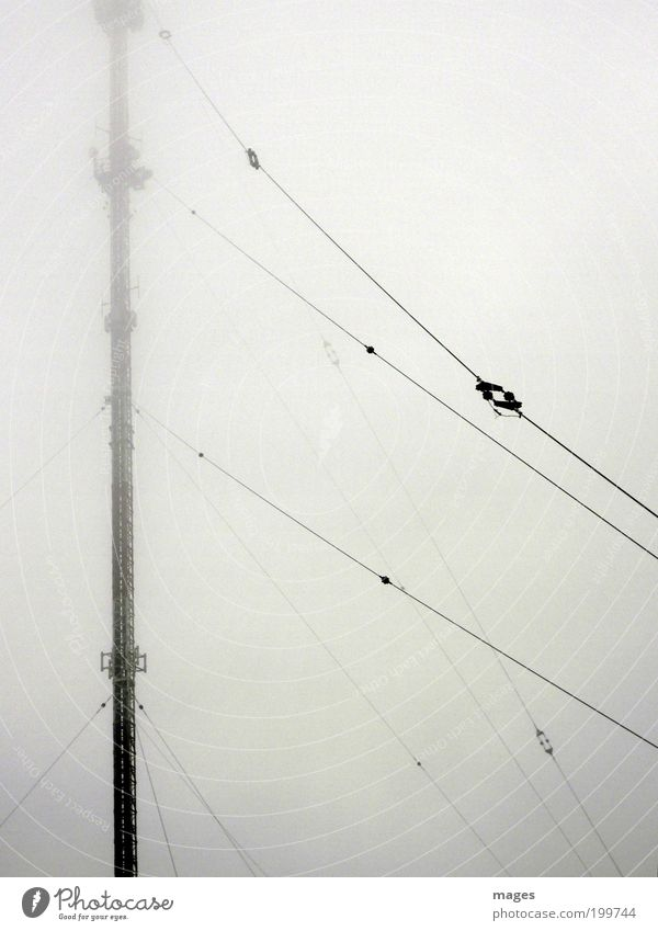 electrosmog Broadcasting tower Telecommunications Tall Broacaster Radiation Antenna Electromagnetic pollution Fog Colour photo Subdued colour Exterior shot