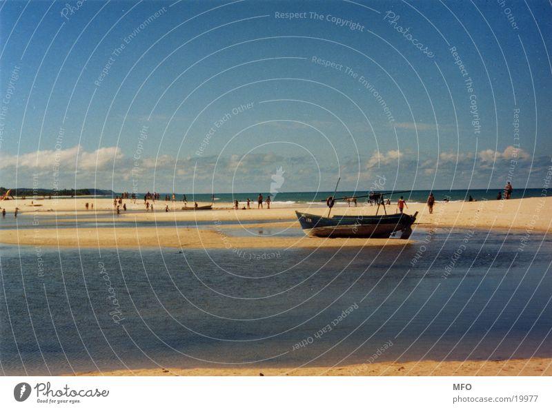 beach of trancoso (brazil) Beach Ocean Brazil South America Sun Wind