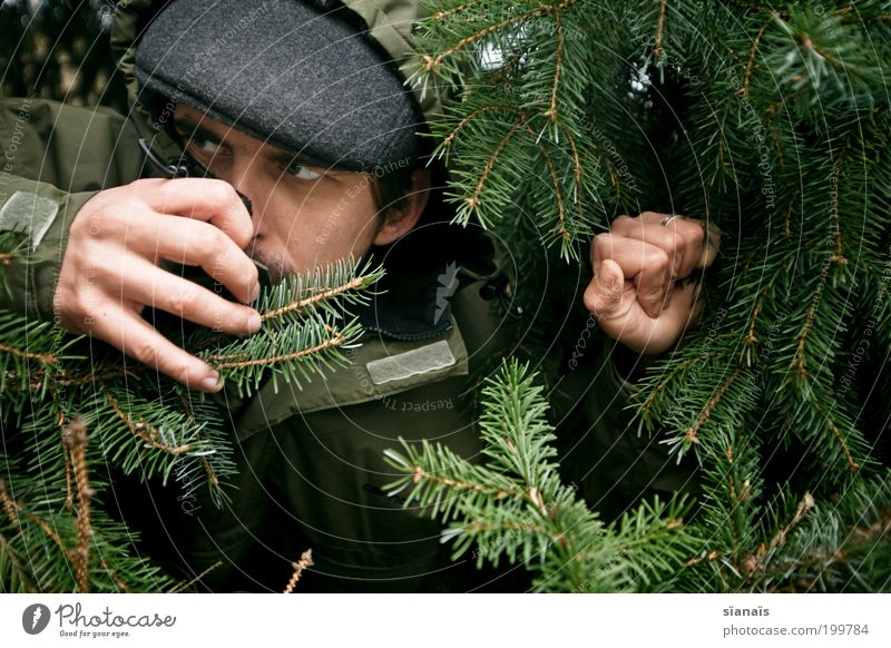 Human being Man Green Forest Fear Adults Masculine Observe Mysterious Fir tree Cap Hide Evil Tension Profession Portrait photograph