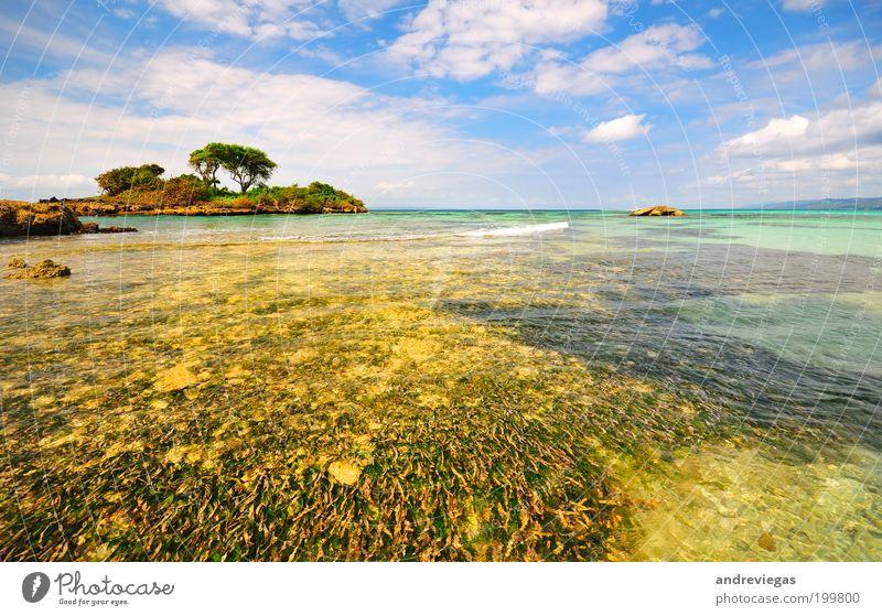 Caribbean sea Nature Blue Sun Summer Joy Beach Vacation & Travel Ocean Landscape Trip Island Tourism Hot Sunbathing Summer vacation Expedition