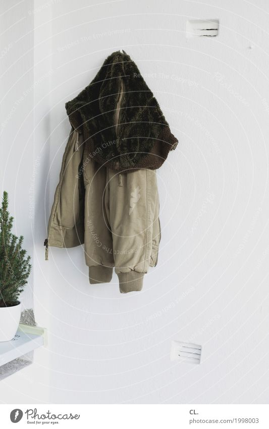 jackets and trees Living or residing Flat (apartment) Decoration Autumn Winter Plant Foliage plant Pot plant Wall (barrier) Wall (building) Balcony Fashion